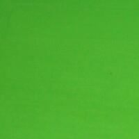 Fluorescent Green 8oz