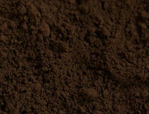 Burnt Umber 8oz