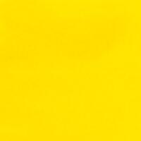Cadmium Yellow Light CP 4oz