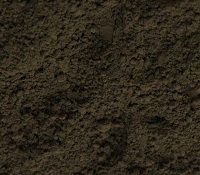 Italian Raw Umber (rare Earth) 2 oz Dry